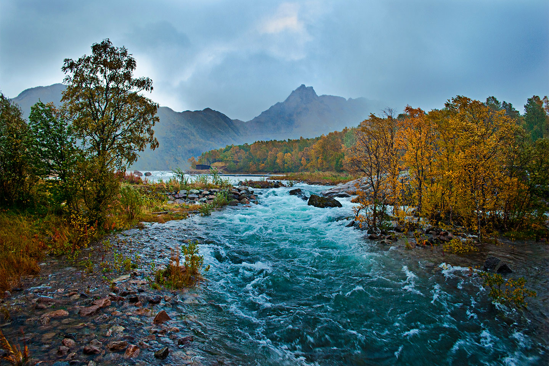 Køb Autumn River av Frank Olsen