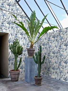 Wild Plants, Blue tapet av Designed for living