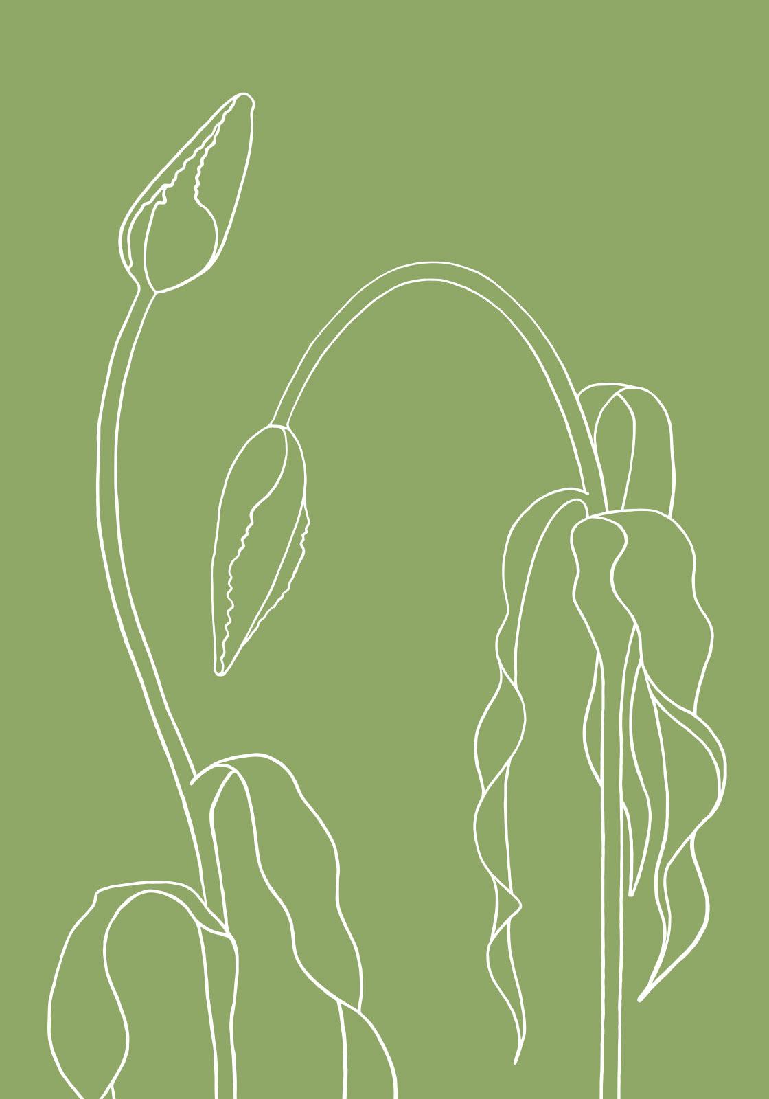 Grøn tulipan av Ten Valleys