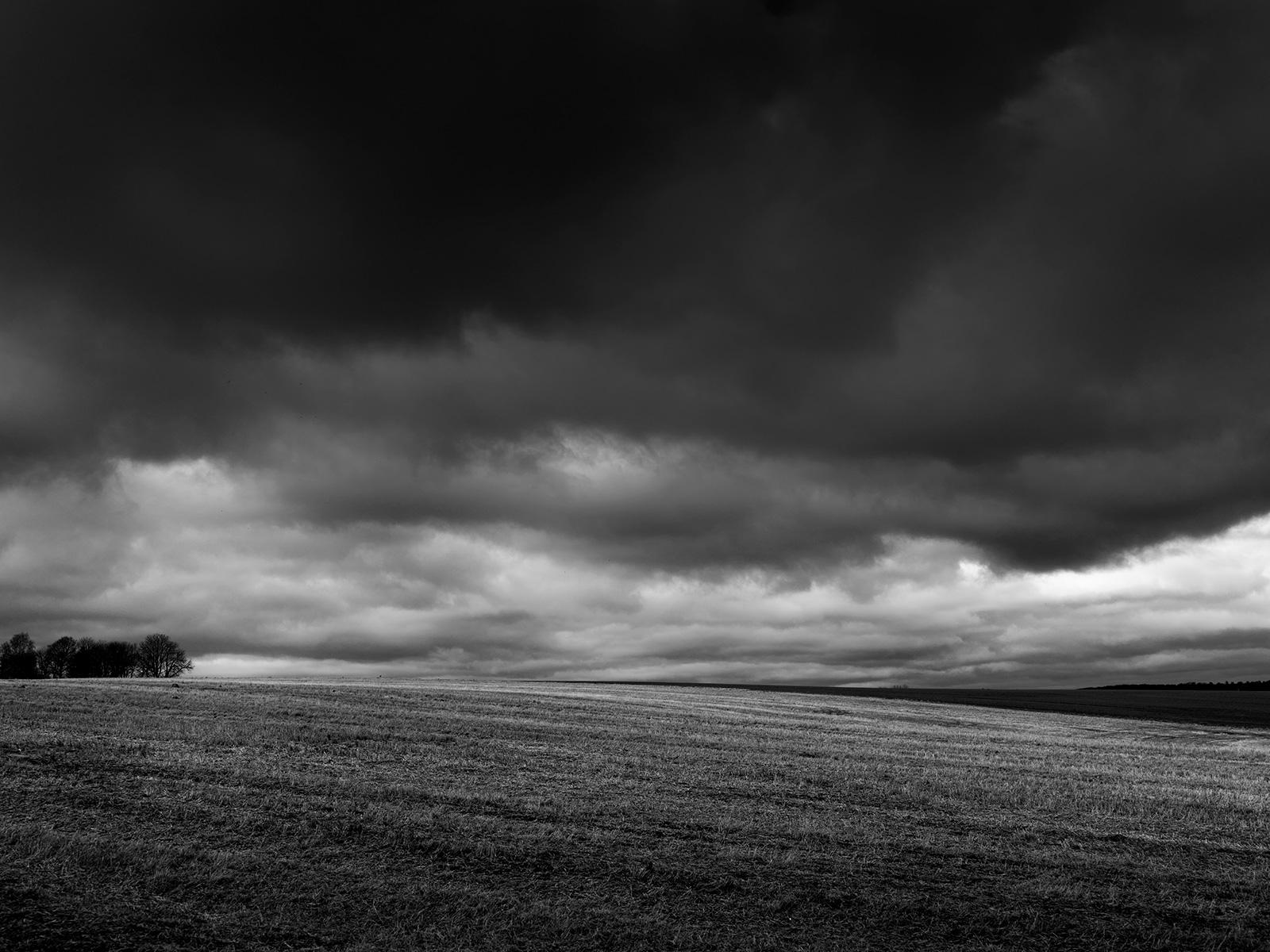 Fields av Jakob Evers