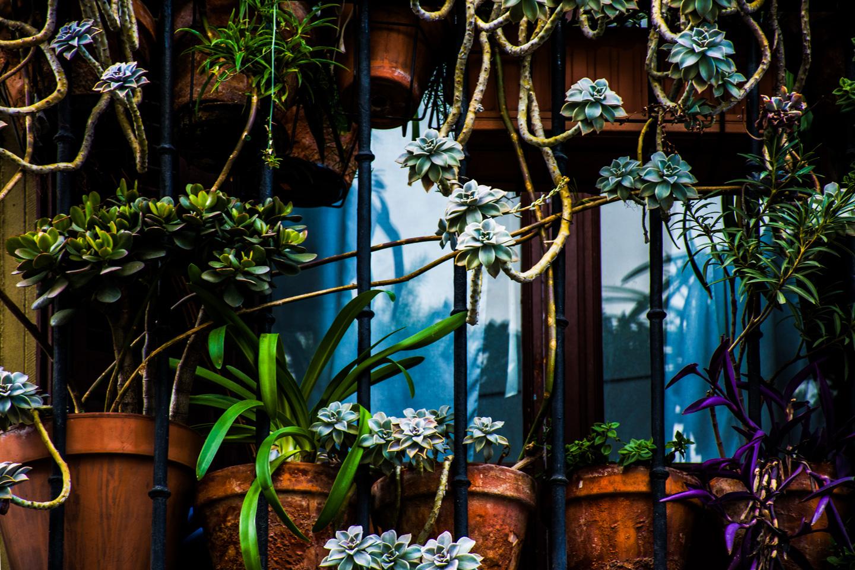Køb Madrid Balcony av Kirsten Stigsgaard