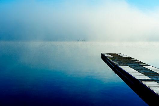 Morgen Svømning av David Foli