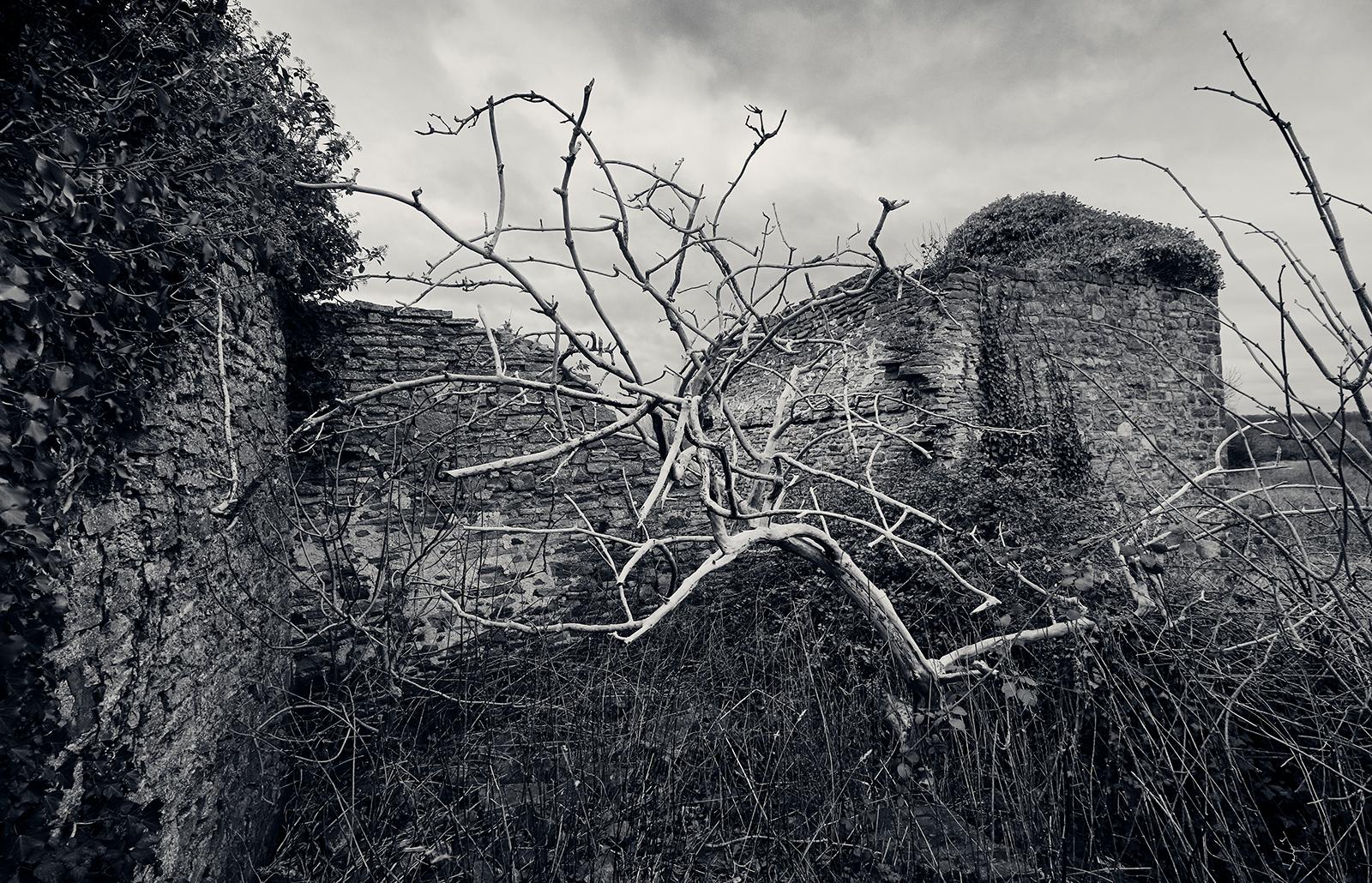 Ruin VI av Peter M Madsen